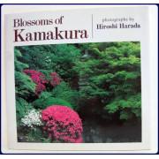 BLOSSOMS OF KAMAKURA.