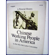 CHINESE WORKING PEOPLE IN AMERICA. A Pictorial History.